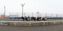 北海道の馬文化